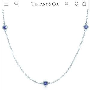 Tiffany&co Color by the yard Elsa Peretti necklace